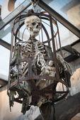 Human skeleton bones steel cage for torture — Stock Photo