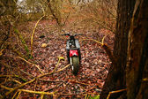Motorbike in a forest — Stock Photo