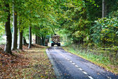Road in a forest  — Stock Photo