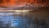 Lake in denmark in winter — Stock Photo