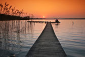 Lake in denmark in winter — Zdjęcie stockowe