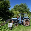Old blue ractor — Stock Photo #73900387