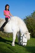 Girl ridding a white horse — Stock Photo