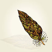 Decorative feathers — Stock Vector