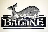 Ballena sal de marca de diseño de logotipo de caja — Foto de Stock