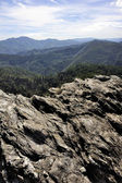 Nature in the mountains of the Cevennes — Stock Photo