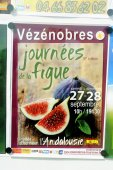 Poster announcing the feast of figs — Stock Photo