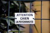 Warning! dog in psychoanalysis — Stock Photo