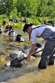 Gold prospectors in full competition — Stock Photo