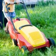 Every little help counts: image of grass trimming or lawn mover machine operating or pushing by small boy or girl with adult behind on green copy space background — Stock Photo #53103765