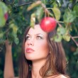 Young woman picking red apples — Stock Photo #54191567