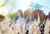 Beautiful young women in autumn high dry grass with light flares background — Stock Photo