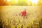 Little boy running on wheat field — Stock Photo