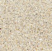 beach, closeup, natural background  — Stock Photo