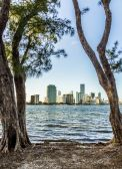 Skyline de cityscape bayfront Miami — Fotografia Stock