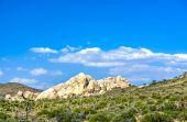 Scenic golden rocks  in Joshua Tree National Park  — Foto Stock