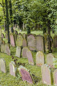 Jewish cemetery in the town of Wiesloch — Stock Photo
