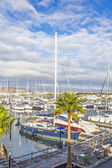 Oats lie in the harbor Marina Rubicon — Stock fotografie