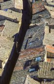 Old tiled roofs in the city of Siena  — Stock Photo