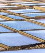 Salt refinery, Saline from Janubio, Lanzarote — Stock Photo