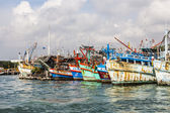 Fisherboats liman — Stok fotoğraf