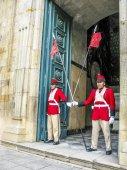 Guard at the legislative Palace — Stock Photo