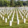 Headstones at the Arlington national Cemetery — Stock Photo #66857731