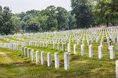 Lapidi al cimitero nazionale di arlington — Foto Stock