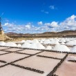 Salt piles in the saline of Janubio in Lanzarote with old toteen — Stock Photo #67285389