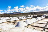 Salt piles in the saline of Janubio in Lanzarote — Stock Photo