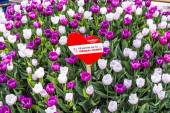 Heart shape in the park with tulips and 12 points for vienna — Stock Photo