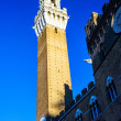 Tower Torre del Mangia .Siena.Italy — Stock Photo #74263251
