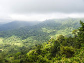 Windblown treetops in the rainforest of the Rio Celeste Valley i — Stock Photo