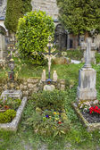 Petersfriedhof Cemetery and catacombs at St Peters Abbey catholi — Stock Photo