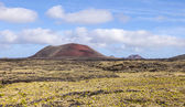 Landscape with cold lava flow  in Lanzarote — Stock Photo