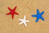 Sahilde vatansever deniz yıldızı — Stok fotoğraf