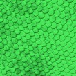 Green reptile skin — Stock Photo #53266905