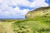 Grassy tropical beach in Hawaii — Stock Photo