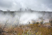 Volcanic steam vents — Stock Photo