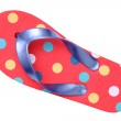 Flip flop sandal — Stock Photo #52150095