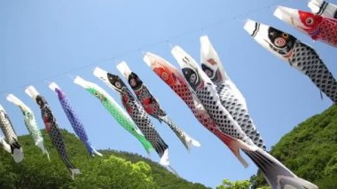 Japanse karper kite streamer — Stockvideo