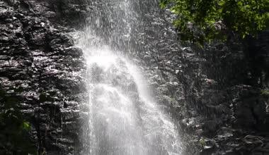 Cascade dans la forêt — Vidéo