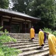 Buddhist priests and believers — Stock Video #72980147