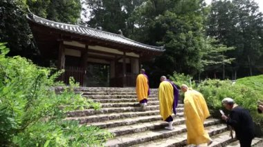 Buddhist priests and believers — Stock Video