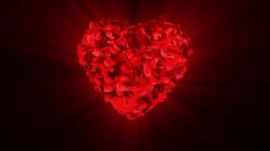 День свадьбы и взрывающиеся роз сердце — Стоковое видео