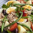 Salad Nicoise — Stock Photo #55343331
