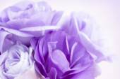 Flower Background Purple Lisianthus — Stock Photo