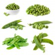 Peas Collection Isolated on White — Stock Photo #72034287