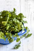 Watercress in Colander over White Timber Background — Stock Photo