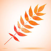 Orange watercolor painted leaf — Stock Vector